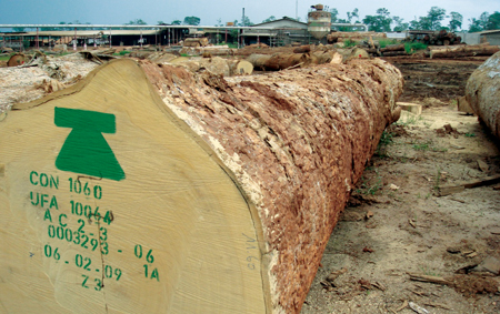 Figure 5 - he log yards