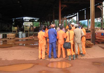 Figure 5 - The technicians of the sawmill de de Béla